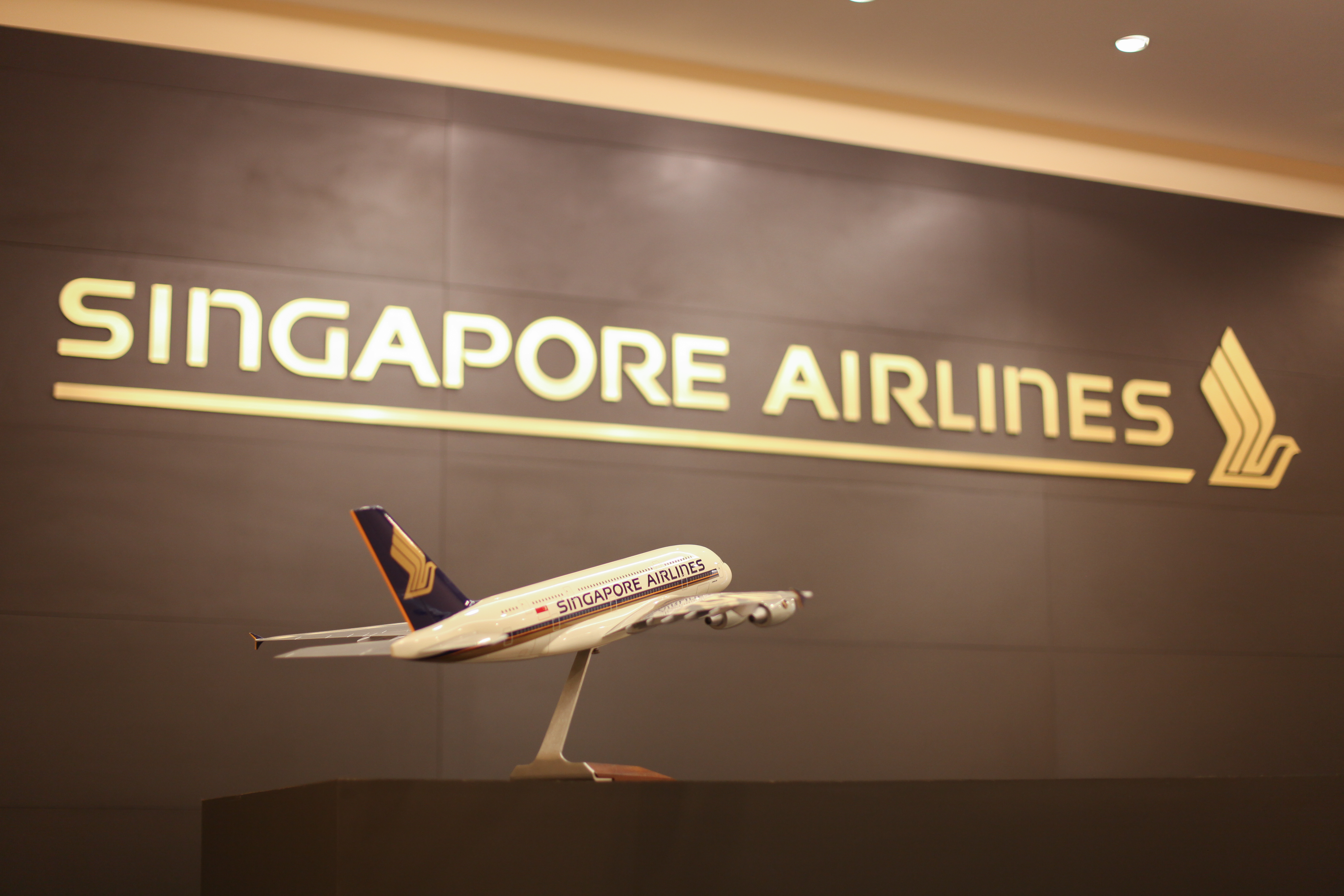 R-H-Singapore-Airlines-19
